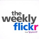 The Weekly Flickr logo from screenshot